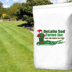 grass seed bag on lawn
